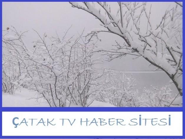 Çatak Köyünde kar yağışı fındık bahçelerine zarar verdi mi?