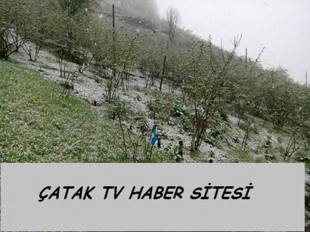 Çatak Köyünün yüksek kesimlerinde kar yağışı etkili oluyor…