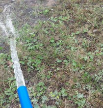 Pinti Yaylasında Su sorunu çözülüyor.