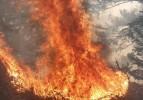 Örümcek Ormanları yanıyor.